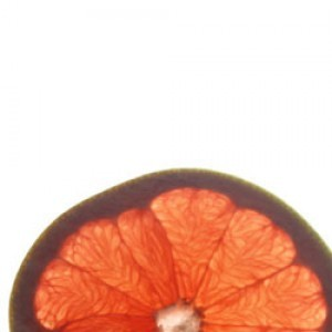 GRAPEFRUIT2-300x300